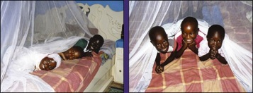 mosquito-nets-save-lives